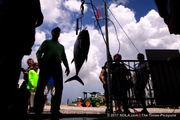 Casting call: The fishy history of the Grand Isle Tarpon Rodeo