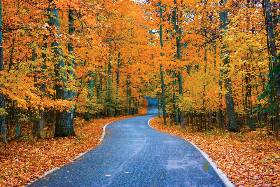 best ways to enjoy fall color along michigan s famed tunnel of trees