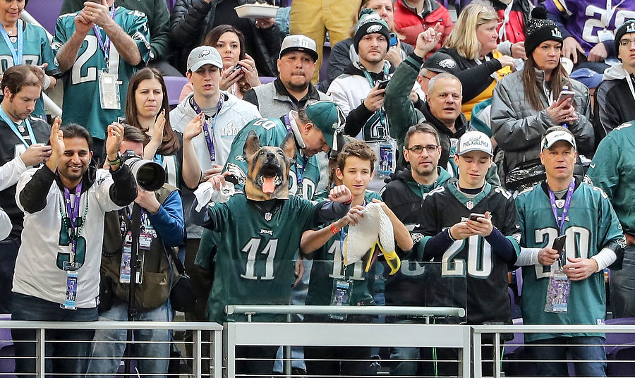 Super Bowl 2018: Eagles fans take over U.S. Bank Stadium (PHOTOS)