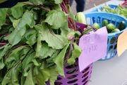 Farm to market: Urban Delights produce returns to Downtown Syracuse Farmers Market