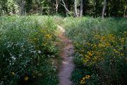 Portman Nature Preserve recognized nationally for conservation efforts