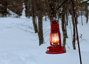 A lantern lights a trail at Tahquamenon Falls State Park.