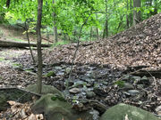 Lease of Maple Heights' Dunham Park to Cleveland Metroparks means improvements