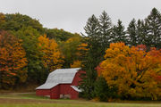 Nikon names Michigan top spot for fall photography for third-straight year