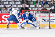 AHL playoffs: Syracuse Crunch loses to Toronto in Game 1