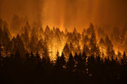 Is $36M restitution for Eagle Creek fire starter too much?