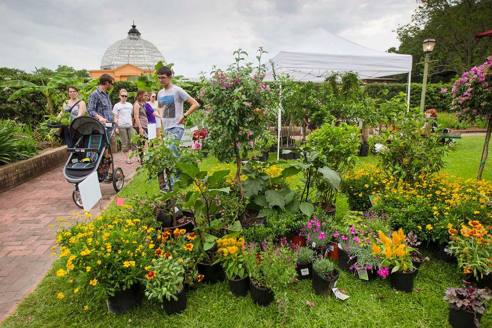 By Dan Gill, Gardening Columnist