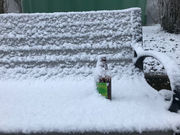 Snow arrives early Sunday in Portland hills; valley still may get an inch
