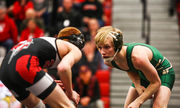 Here are the high school wrestling teams that made state quarterfinals