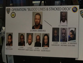 """The arrests of 14 defendants, including the alleged supplier of four narcotics-trafficking rings whose drugs were tied to at least 21 overdoses, eight fatal, strikes a """"critical blow"""" to the borough's illegal drug trade, District Attorney Michael E. McMahon said Thursday. Five of the defendants are purported gang members, said Assistant Chief William Aubry, commanding officer, Citywide Investigations, who announced the arrests along with McMahon and Assistant Chief Kenneth Corey, the NYPD borough commander. McMahon said the main target, repeat felon Damien (Drama) Rice, 46, has """"operated with impunity for decades."""" Rice, a reputed Bloods gang member, acted as both a wholesaler and retailer of the illicit drugs the defendants peddled, he said. Dating to 1988, Rice has eight criminal convictions and has served four prison sentences for drug-related convictions, according to officials and online records of the state Department of Corrections and Community Supervision. He was most recently convicted in 2012 and paroled in April 2015, those records show. Rice has been charged as a major trafficker for allegedly supplying the drug organizations, which peddled and possessed large amounts of heroin, fentanyl, cocaine and oxycodone across Staten Island, authorities said."""