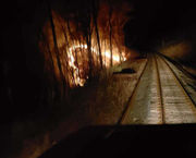 Deerfield firefighters extinguish overnight brush fires