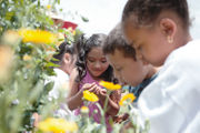 This homegrown nonprofit is teaching our city's youth through farming