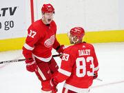 Evgeny Svechnikov's late goal lifts Red Wings past Blackhawks
