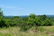 Developer signs option agreement to preserve Mt. Tom land in Easthampton
