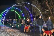Hundreds embark on annual Lights on the Lake Dog Walk