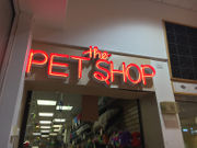 Humane officer in Palmer pet shop dispute: 'I'm not backing down'