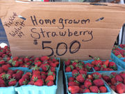 Syracuse's Downtown Farmers Market opens on picture perfect Tuesday