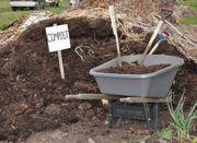 It's time to kick these 12 bad gardening habits