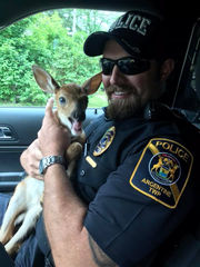 Officers rescue fawn being chased by dog