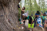 Electric Forest's loving culture embodied in 'Giving Tree'