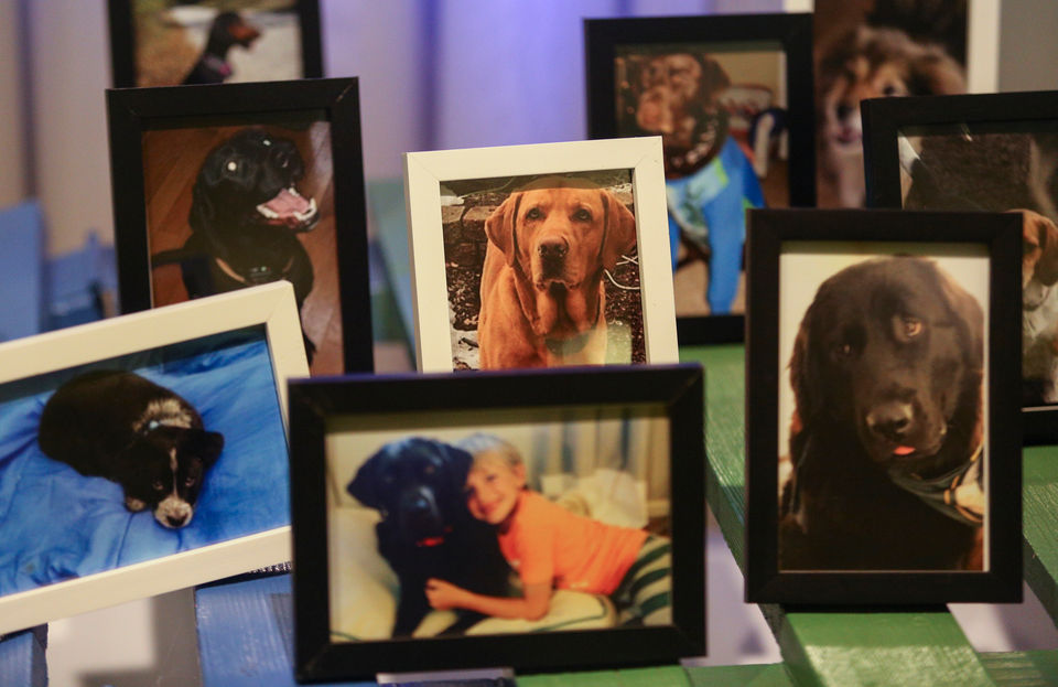 Motorcycle run to honor 30 dogs that died in kennel fire