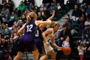 Saginaw-area Girls Basketball Roundup: Hemlock's defense earns TVC West win