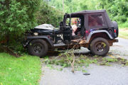 Woman takes out mailbox, bird feeder and tree with Jeep (PHOTOS)