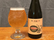 Fruit and funk from Hudson Valley's Plan Bee Farm Brewery (Beer review)