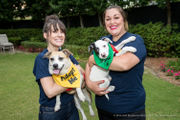 Animal Rescue New Orleans benefit barks up the right tree