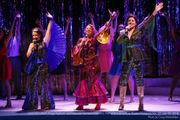 Let 'Mamma Mia!' take you on a nostalgic get-away to Broadway Rose