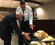Allentown names successor to fire chief, who is retiring with arson K-9 Judge