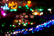 How many lights at The Grotto's Christmas Festival of Lights? About 1.5 million.