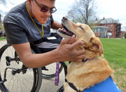 AIC's therapy dog 'Woody' soothes souls on campus (photos, video)