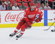 How active should Detroit Red Wings be in free agency?