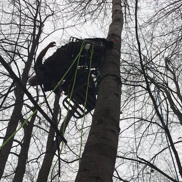Hunter rescued after hanging upside down off tree stand for 2 hours