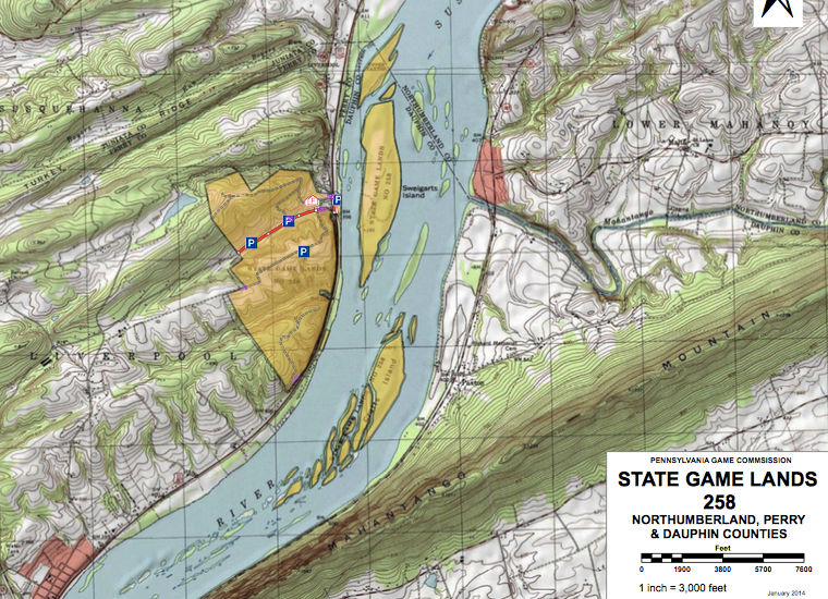 Who owns the Susquehanna River islands? | PennLive com