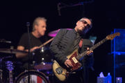 Elvis Costello proves that good things come to those who wait (review)