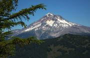 Zigzag Mountain is a tough hike with a gorgeous Mount Hood view