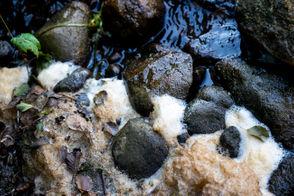PFAS foam on Huron River in Ann Arbor, Ypsilanti Township
