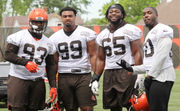 Cleveland Browns 2018 Training Camp: Defensive tackle preview
