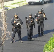 Heavily-armed cops, helicopters searching in New Brighton