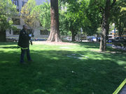 Person dies after setting self on fire in downtown Portland park in apparent protest