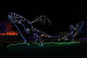Holiday lights dazzle at Shore Acres, illuminating the Oregon coast