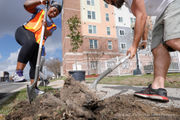 Volunteers plant trees throughout Mid-City area