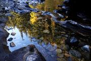 A fall stroll through Icicle Gorge, a beautiful hike in Washington's Cascades