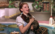 'Wizard of Oz' remake from Toto's perspective; 'Batwoman' TV show; more: PM Buzz