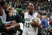 25 great high school boys basketball forwards in Michigan this season