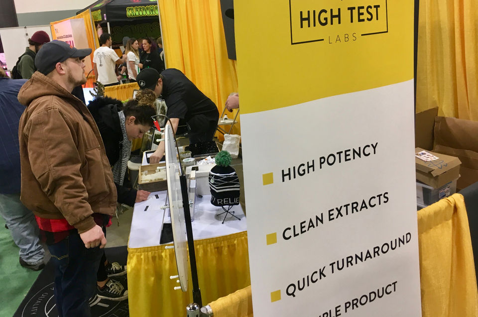 Businesses sprout up to support Massachusetts marijuana industry