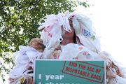 Where are plastic bags banned in Oregon? Complete list