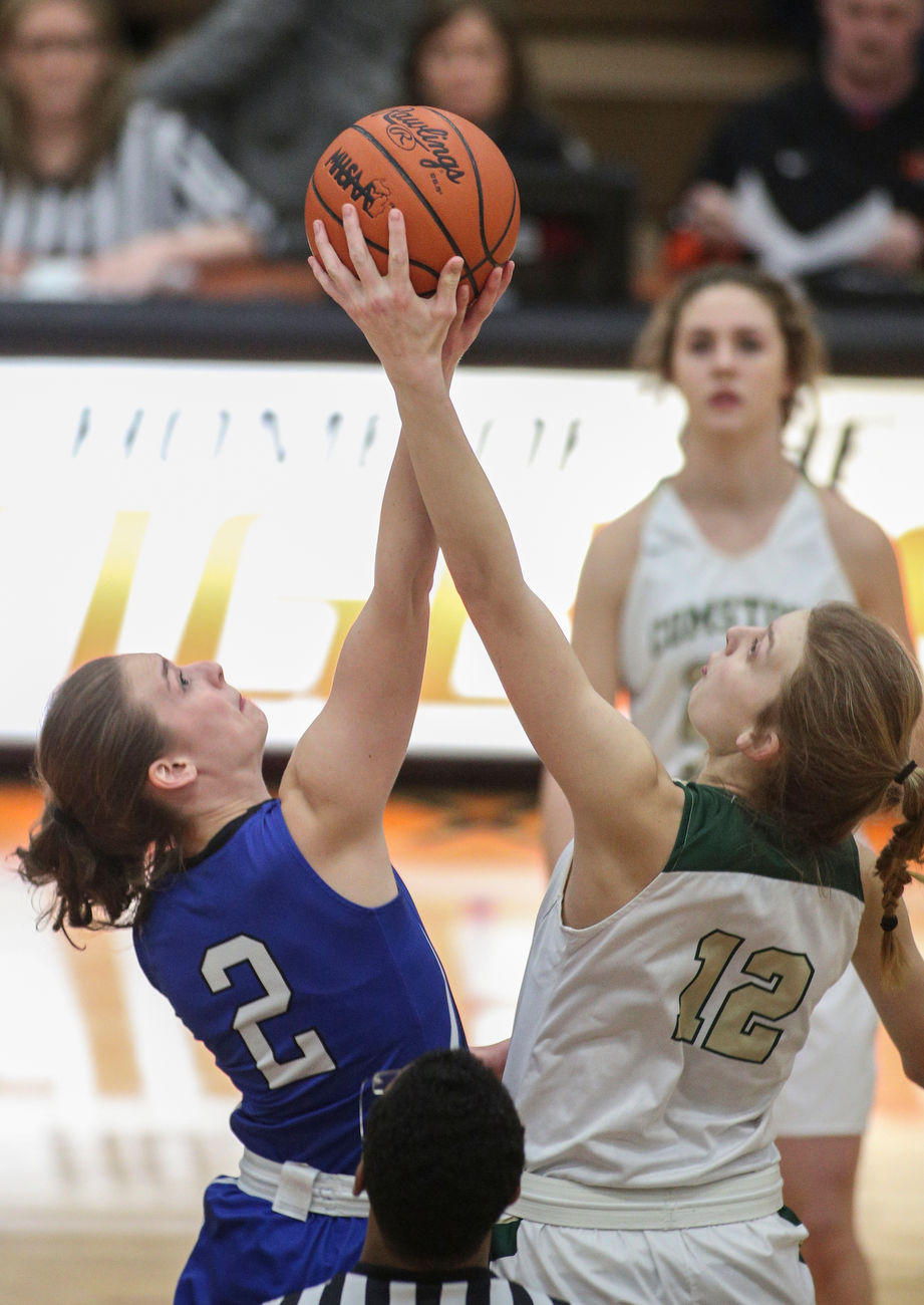 Michigan high school girls basketball mlive scores brackets for tonights michigan high school girls basketball regionals fandeluxe Image collections